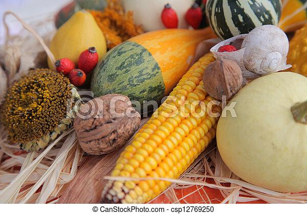Autumn Harvest - csp12769250