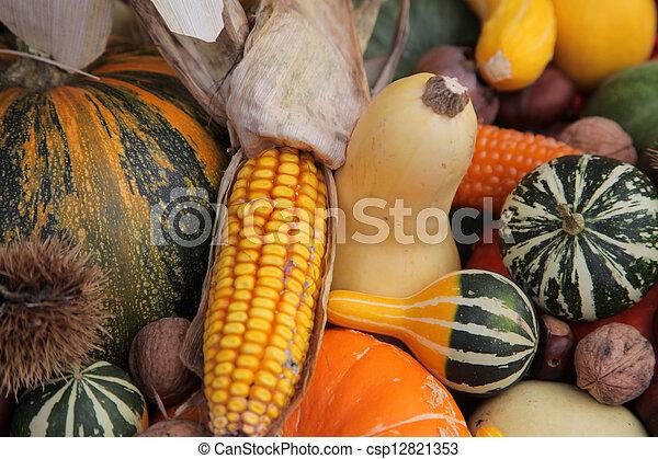 Autumn Harvest - csp12821353