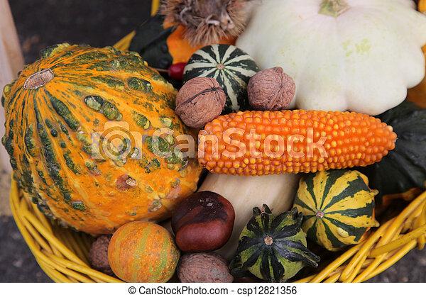 Autumn Harvest - csp12821356