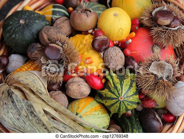 Autumn Harvest - csp12769348