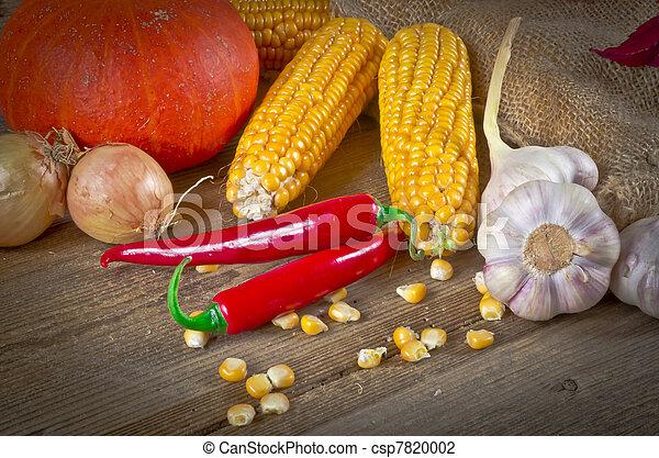 Autumn harvest - csp7820002