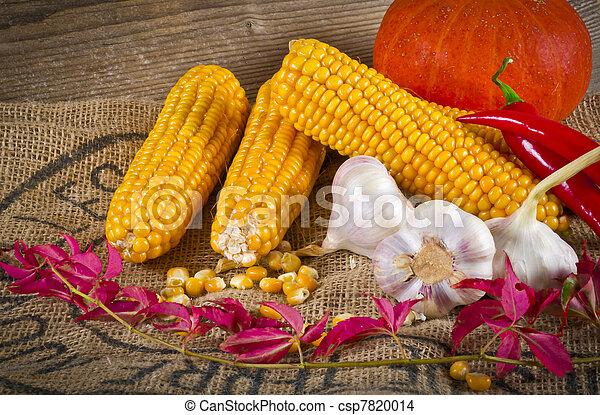 Autumn harvest - csp7820014