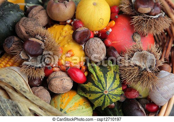 Autumn Harvest - csp12710197
