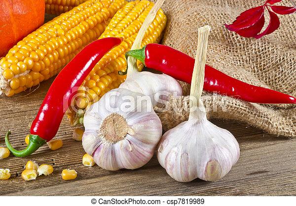 Autumn harvest - csp7819989