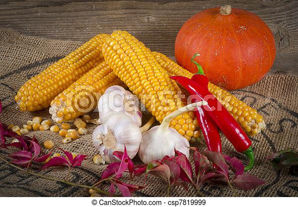 Autumn harvest - csp7819999