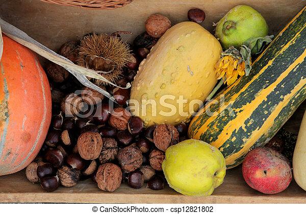 Autumn Harvest - csp12821802