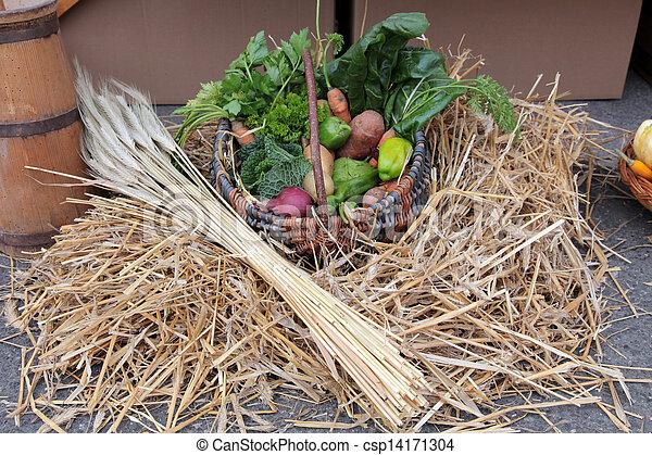 Autumn Harvest - csp14171304