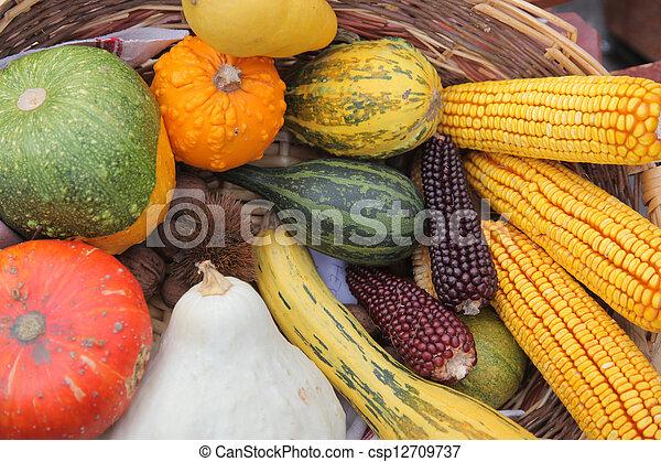 Autumn Harvest - csp12709737