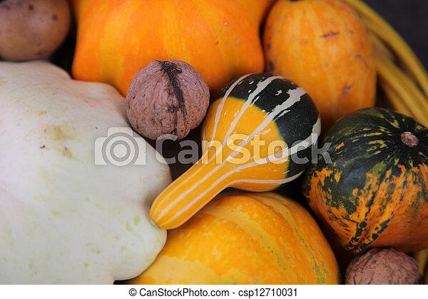 Autumn Harvest - csp12710031