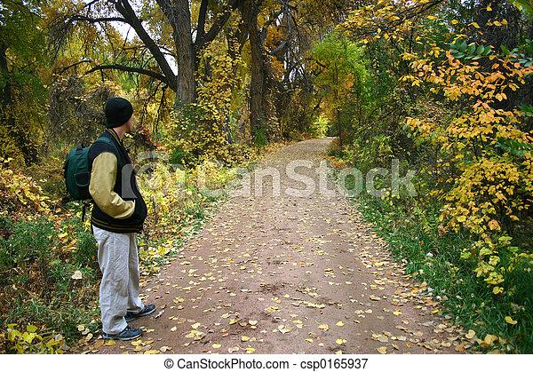 Autumn Hike - csp0165937