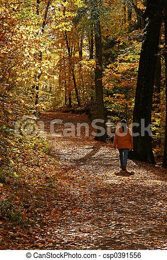 Autumn Hike - csp0391556