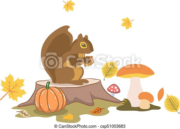 Autumn illustration, Squirrel in the forest sits near the mushrooms, cartoon on a white background. - csp51003683
