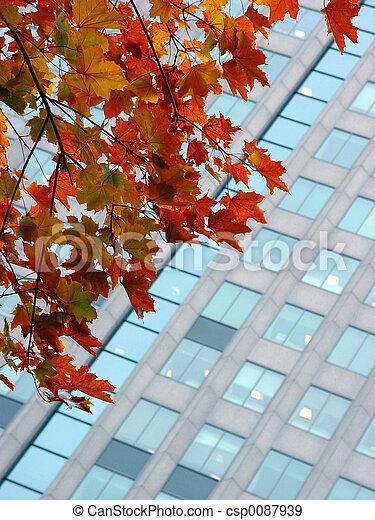 Autumn in a city - csp0087939