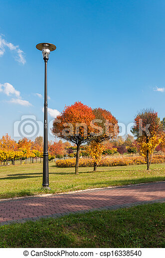 Autumn in a park - csp16338540
