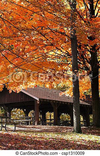 Autumn In A Park - csp1310009