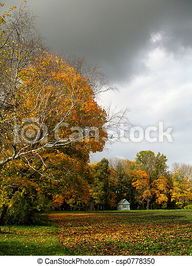Autumn in a park - csp0778350