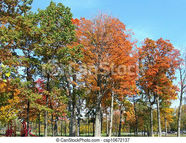 Autumn in a park - csp10672137