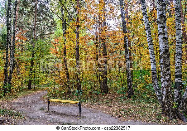 Autumn in park - csp22382517