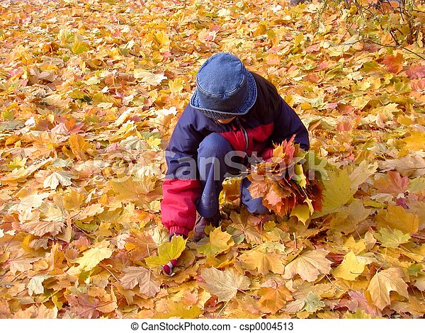 Autumn In Park - csp0004513