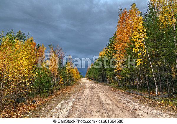 Autumn in Siberia. - csp61664588