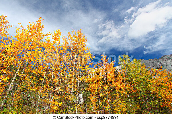 Autumn in the Canadian Rockies - csp9774991
