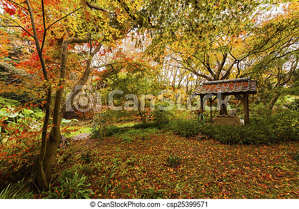 Autumn in the forest - csp25399571