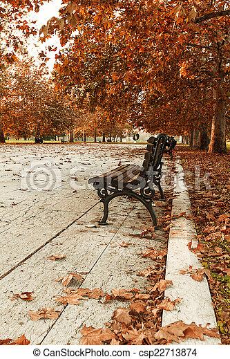 Autumn in the park - csp22713874