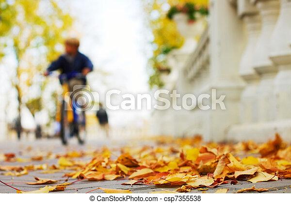 Autumn in the park - csp7355538