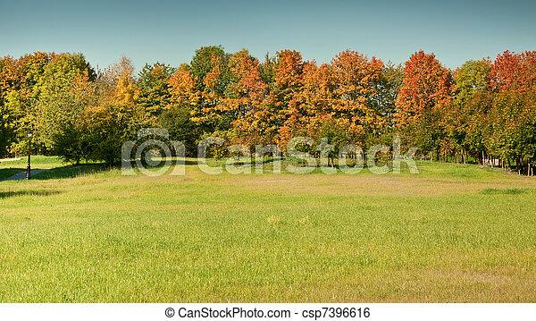 Autumn in the park - csp7396616