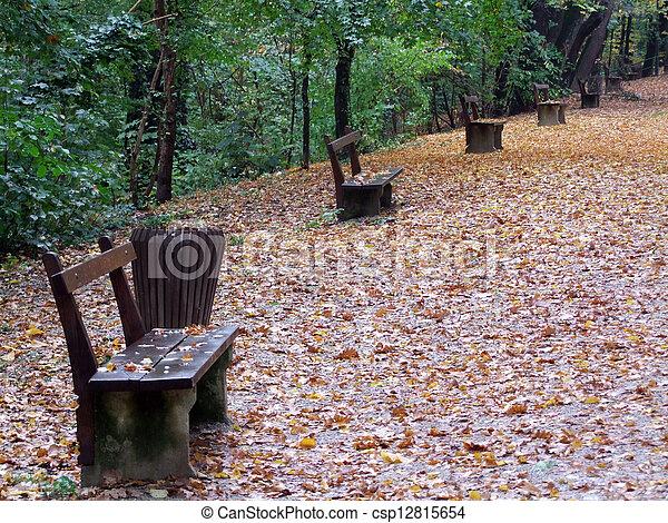 Autumn in the park - csp12815654