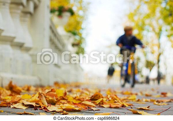 Autumn in the park - csp6986824