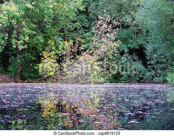 Autumn in the park - csp4819123