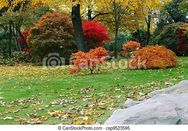 Autumn japanese garden - csp9523595