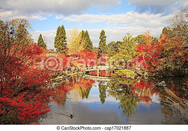 Autumn Japanese garden with maple - csp17021887