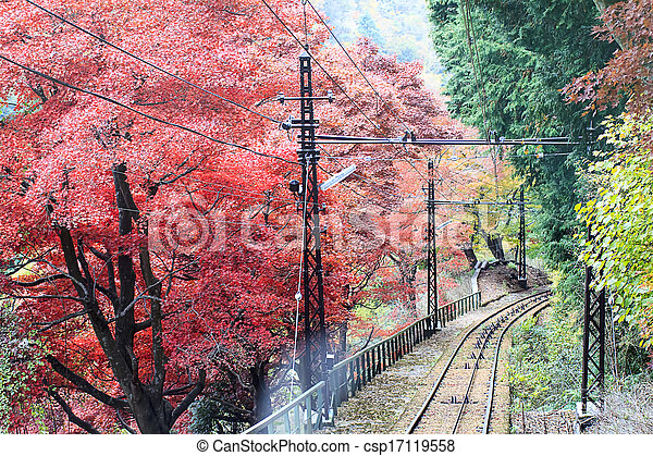 Autumn Japanese garden with maple - csp17119558