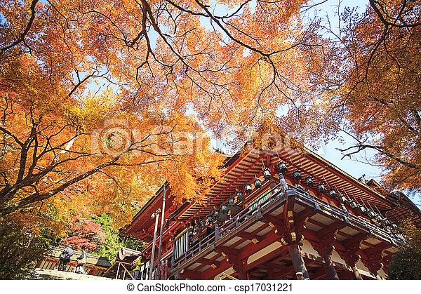 Autumn Japanese garden with maple - csp17031221