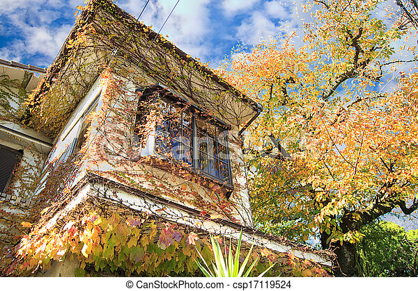 Autumn Japanese garden with maple - csp17119524