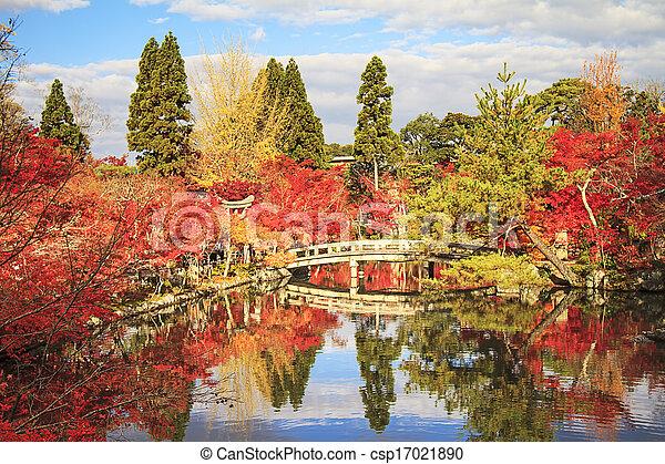 Autumn Japanese garden with maple - csp17021890