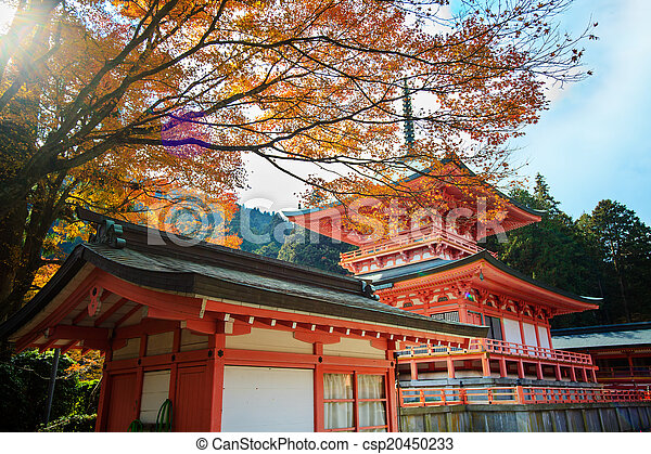 Autumn Japanese garden with maple - csp20450233
