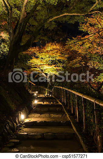 Autumn Japanese garden with maple trees at night - csp51577271