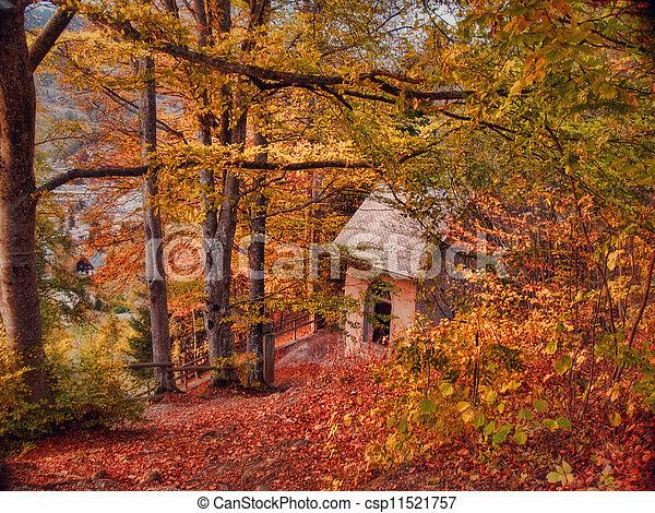 Autumn landscape - Cabin in the woods - csp11521757