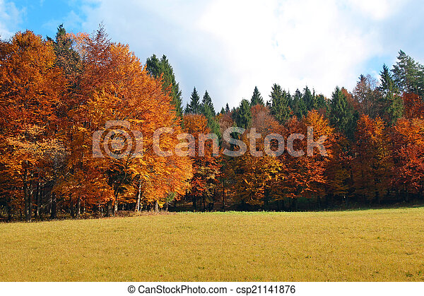 autumn landscape - csp21141876