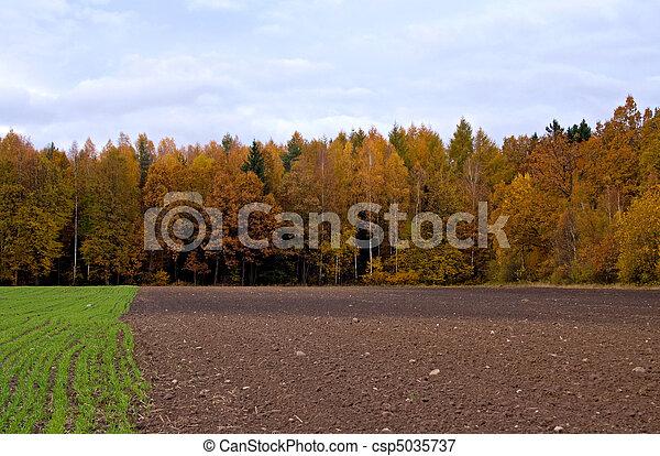 autumn landscape - csp5035737
