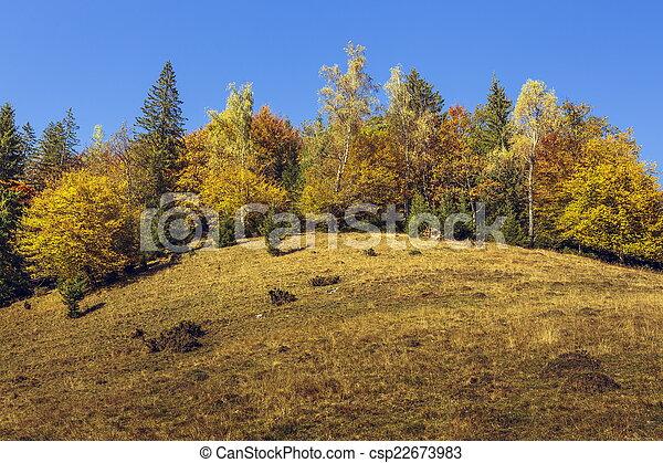 Autumn landscape - csp22673983