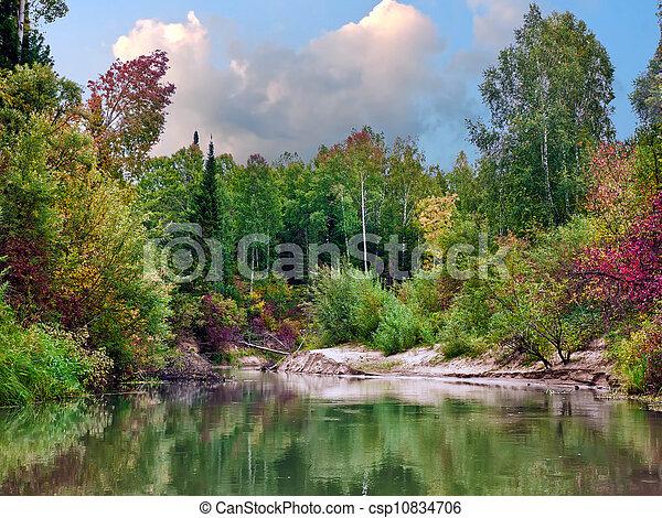 Autumn landscape   - csp10834706