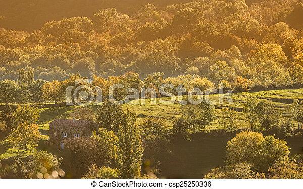 Autumn Landscape - csp25250336