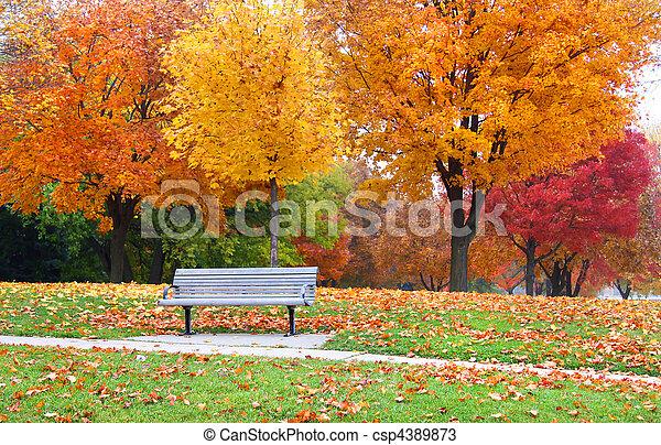 Autumn landscape - csp4389873