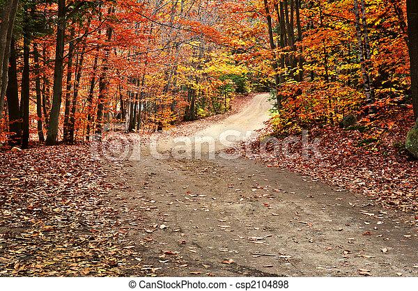 Autumn landscape with a path - csp2104898