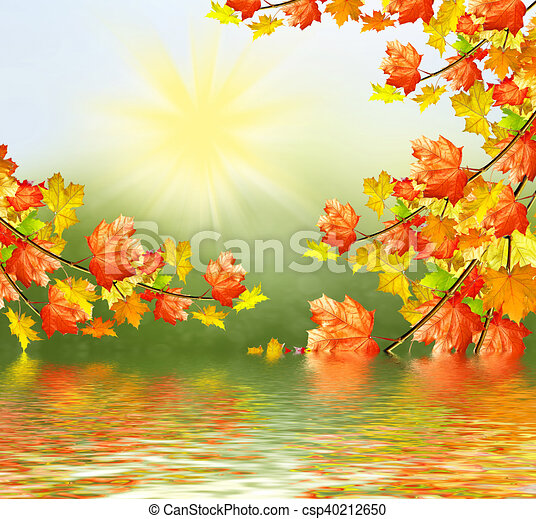 autumn landscape with bright colorful foliage. Indian summer. - csp40212650