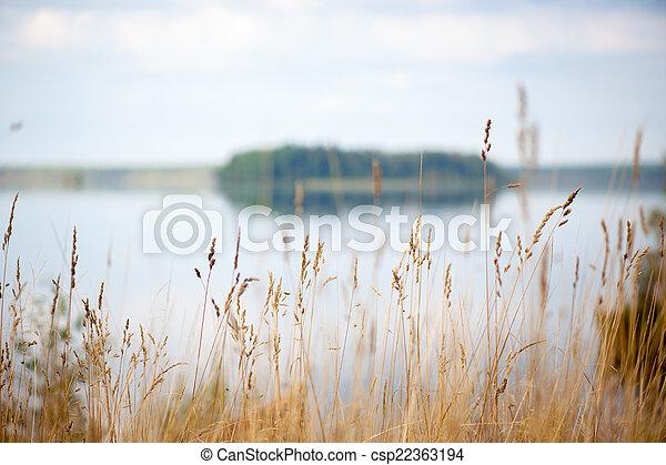 Autumn landscape with lake - csp22363194